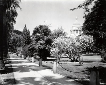 Image of State Capitol with surrounding chain fence, anchored to cement posts line the sidewalk around the grounds